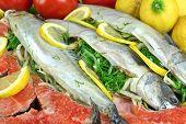 foto of redfish  - Dish With Fresh Stuffed Fish Salmon Steaks Lemon Slice And Herbs Close - JPG
