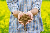 picture of farm land  - Male Farmer Examines Soil Quality on Fertile Oilseed Rapeseed Agricultural Farm Land - JPG