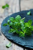 pic of mint-green  - Fresh green mint on the wooden table selective focus - JPG