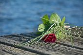 stock photo of burial  - last love greeting rose bouquet on the old wooden pier during a burial at sea copy space - JPG