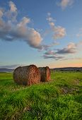 stock photo of hay bale  - Beautiful meadow with bales of hay at sunset - JPG
