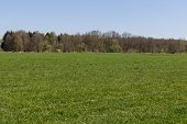foto of bavaria  - Spring landscape next to Schwandorf in Bavaria - JPG