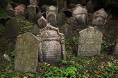 stock photo of tombstone  - Abandoned tombstones at the Old Jewish Cemetery in Prague - JPG