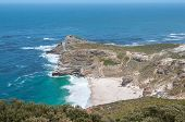 pic of fynbos  - Dias Beach and the Cape of Good Hope to the west of Cape Point - JPG