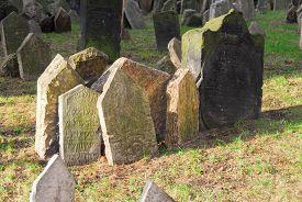 picture of headstones  - Headstones in the Jewish cemetery Prague Czech Republic - JPG