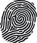 foto of dna fingerprinting  - A finger print that - JPG