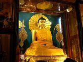 stock photo of siddhartha  - Golden Buddha in the Mahabodhi Temple Bodhgaya Bihar India - JPG