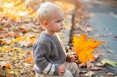 Small Baby Toddler On Sunny Autumn Day. Warmth And Coziness. Happy Childhood. Sweet Childhood Memori poster