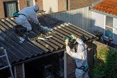 Professional Asbestos Removal. Men In Protective Suits Are Removing Asbestos Cement Corrugated Roofi poster