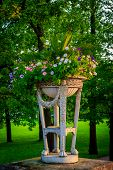 Summer Park. Background Summer Park. Russian Well-groomed Park. Beautiful Alleys Of The Park poster