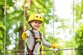 Happy Child Boy Calling While Climbing High Tree And Ropes. Portrait Of A Beautiful Kid On A Rope Pa poster