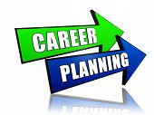 Career Planning In Arrows