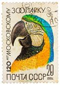 Stamp Printed By Russia Showing Parrot, 120-th Anniversary Of The Moscow Zoo