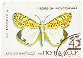 Stamp Printed In Ussr, Shows Butterfly Utetheisa Pretty Utetheisa Pulchella , From Series