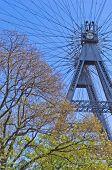 picture of wieners  - Viennese giant wheel called Wiener Riesenrad built in 1897 - JPG