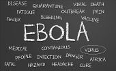 image of hemorrhage  - Ebola word cloud written on a chalkboard - JPG