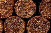 picture of cigar  - Close up of cigars in open humidor box - JPG