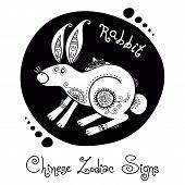 picture of rabbit year  - Rabbit - JPG