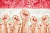 picture of labourer  - Hungary Labour movement workers union strike concept with male fists raised in the air fighting for their rights Hungarian national flag in out of focus background - JPG