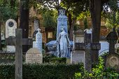 stock photo of cemetery  - The Protestant Cemetery  - JPG