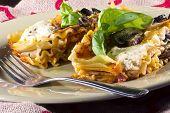 pic of lasagna  - Vegan or vegetarian lasagna dinner topped with mushrooms olives artichoke hearts and fresh basil - JPG