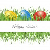 picture of ester  - Easter card with eggs on green grass and place for your text - JPG