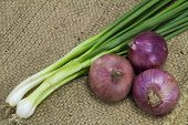 picture of onion  - Onion and spring onion on sack background - JPG