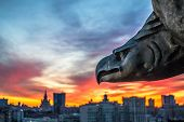 picture of metal sculpture  - Sculpture of eagle and view of city during sunset in evening in Moscow - JPG