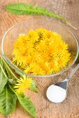 pic of edible  - Edible dandelions flowers, green and spoon with sugar. ** Note: Shallow depth of field - JPG