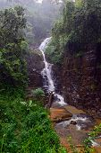 foto of rainy season  - Tropical downpour mountains of Sri Lanka in the rainy season - JPG