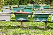 pic of beehive  - Apiary with bee beehives on the of mountain - JPG