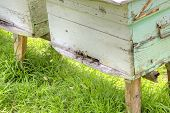 stock photo of beehive  - Apiary with bee beehives on the of mountain - JPG