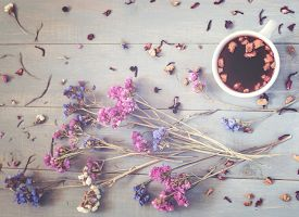 picture of black tea  - A cup of tea with flowers and berry tea around it on the grey wooden table in vintage style