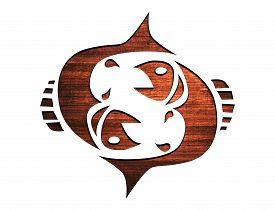 image of zodiac sign  - Zodiac Symbols and signs - JPG